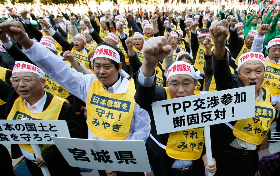 Farmers in Japan protest the Trans-Pacific Partnership