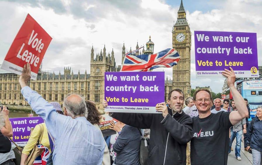 UKIP Demonstrators