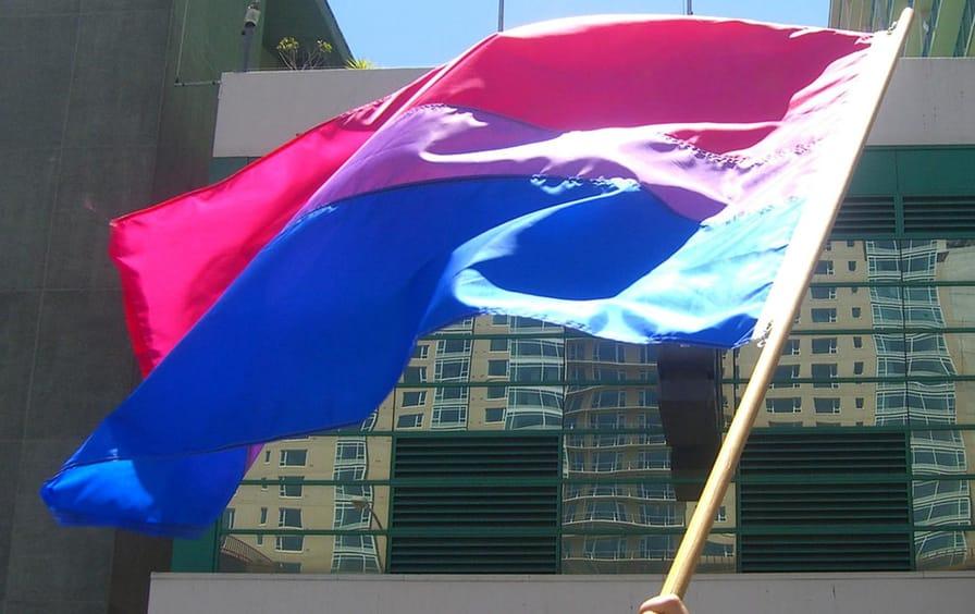 Bi pride flag