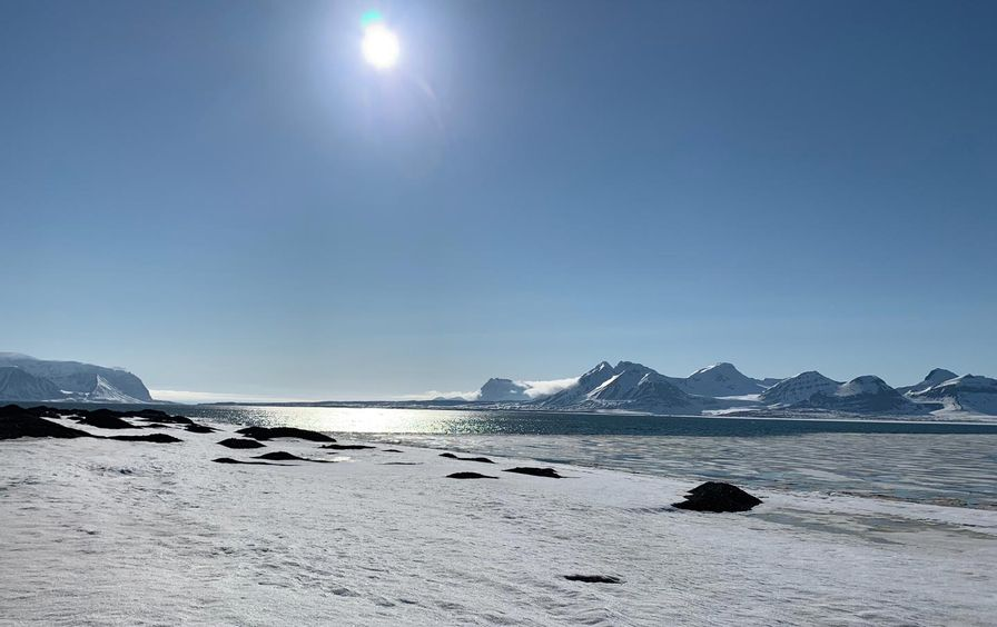 AAA-Arctic-Feature2_img