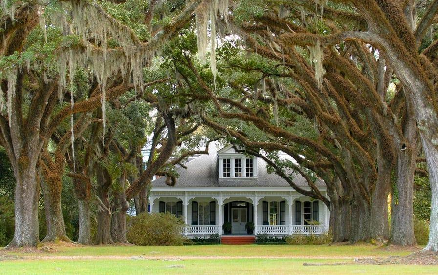 plantation-weddings-shutterstock-img