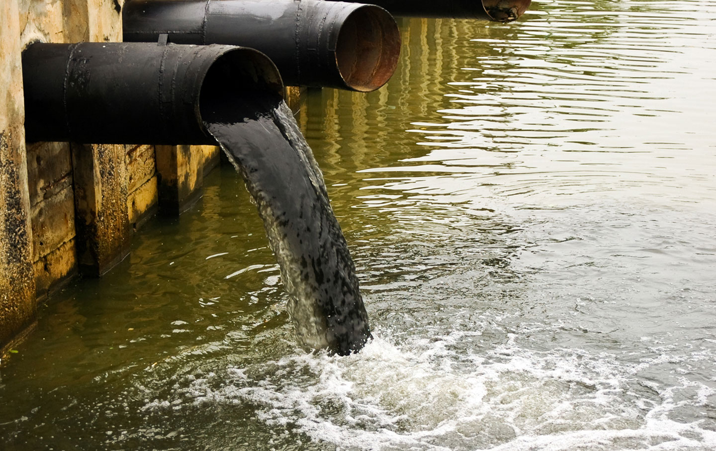dirty water and water benefits essay