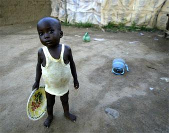 Essay on world food crisis?