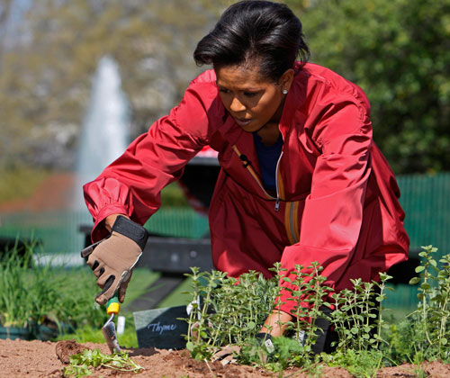 "Michelle Obama plants a 1,100-square-foot organic vegetable garden on the south lawn of the White House. It is the first of its kind since Eleanor Roosevelt planted a ""victory garden"" during World War II. Environmental writer Mark Hertsgaard says that the first lady's embrace of organic veggies could create a fresh-food boom. (AP Images)"