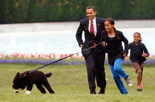 "A very special election-night promise finally gets fulfilled when the president's daughters Malia, 10, and Sasha, 7, welcome their new puppy (named Bo after their late grandfather) to the White House. The Portuguese water dog is a gift from Sen. Ted Kennedy and Malia calls him ""perfect."" (AP Images)"