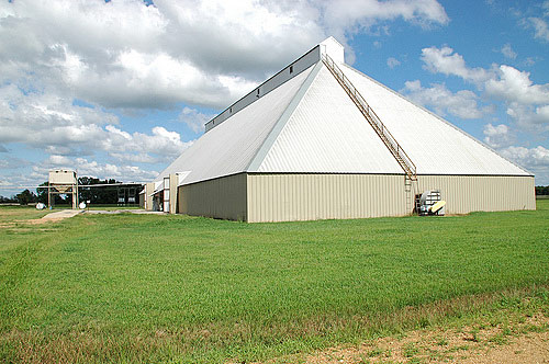 Less cotton grown means fewer jobs at the cotton gin in Tchula. With the cotton industry sinking, Mileston and Holmes County have had to find other ways to get by. Click to return to this article.
