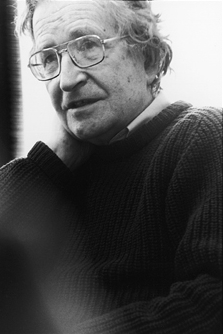Chomsky first made his mark as a brilliant linguist, but since the 1960s has  been better known as a left-wing critic of the political and economic  establishment, particularly on issues of war and human rights.