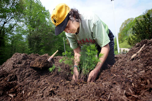 Entomologist Gay Williams sports a bug on her baseball cap as she plants native Maryland coreopsis at the Department of Agriculture's building in Maryland. In a recent Nation forum, environmentalist Bill McKibben argues that hyper-individualism has damaged society and distorted our relationship with nature. Only by working together can we restore the balance.  (AP Images)