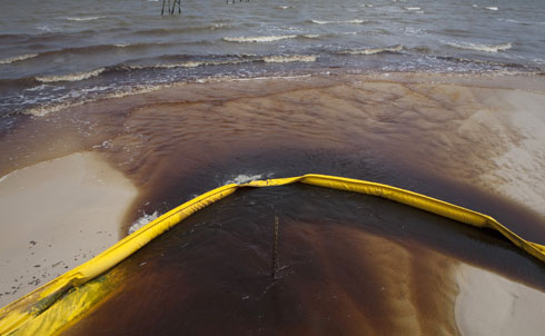 """In the aftermath of the April 2010 explosion on BP's Deepwater Horizon oilrig, the media was saturated with images of oil-streaked Gulf Coast water and birds coated in a toxic mix of petroleum and dispersant.But as Naomi Klein writes in """"The Search for BP's Oil,"""" when """"the spill-cam was switched off and it became clear that there would be no immediate mass die-offs among dolphins and pelicans… most of us were pretty much on to the next telegenic disaster."""" When Klein visited the Gulf in early December aboard the research vessel Weatherbird II, however, the very real—if harder to spot—effects of the spill were still being felt.  Credit: Reuters Pictures"""