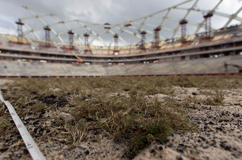 Stadium-in-Brazil