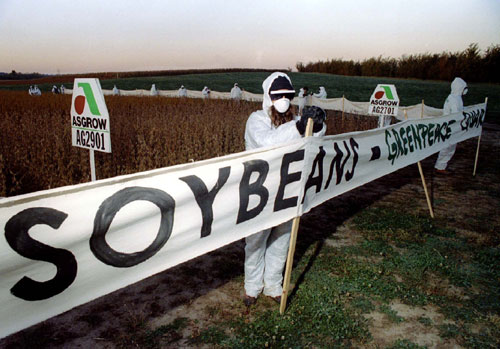 Monsanto's attempts to sell genetically altered soybeans in Europe without labels resulted in countrywide bans, lawsuits, field sabotage and eventually a tarnished reputation worldwide in 1996. In a 1999 article, Kirkpatrick Sale lays out how Monsanto's new propaganda campaign is working to change the company's image. A little over a year later, Monsanto hadn't changed, as The Nation's Nancy Beiles' description of the company's chemically toxic practices proves.