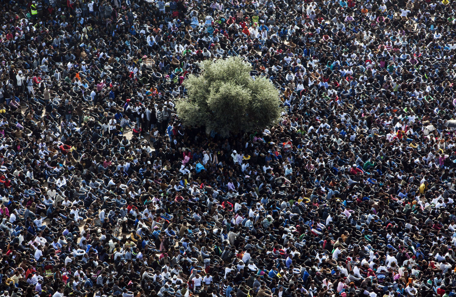 Immigration-protest-in-Israel