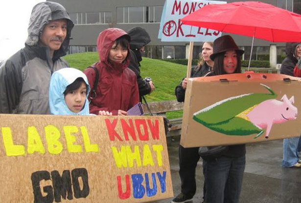 pAn-anti-GMO-rally-in-Seattlep