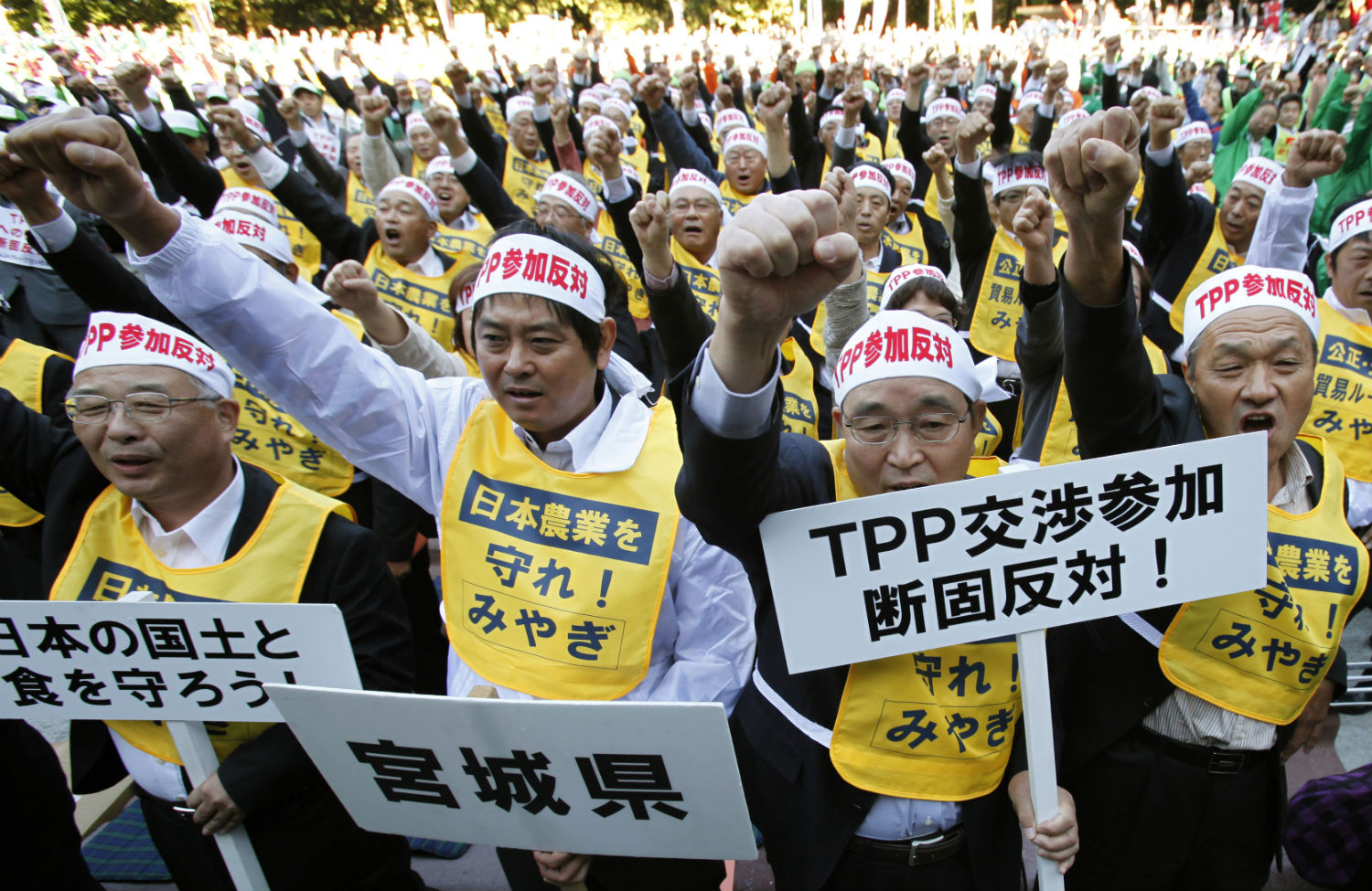 Farmers-in-Japan-protesting-the-Trans-Pacific-Partnership