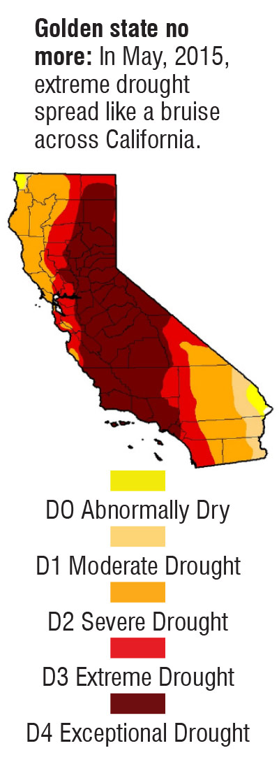 California Drought Graphic