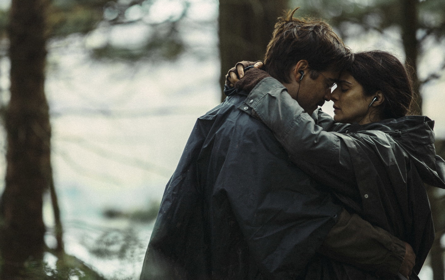Yorgos Lanthimos's 2015 film 'The Lobster.'