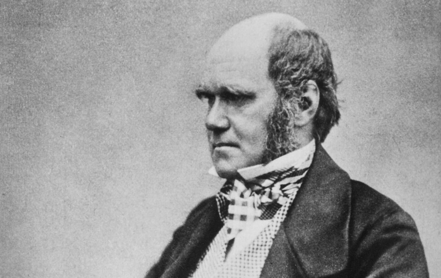 November 24 1859 Charles Darwin Publishes On The Origin