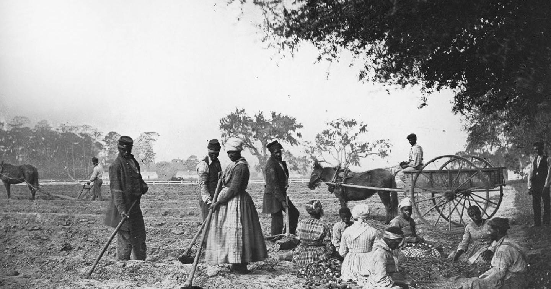 December 6, 1865: The 13th Amendment, Prohibiting Slavery ...