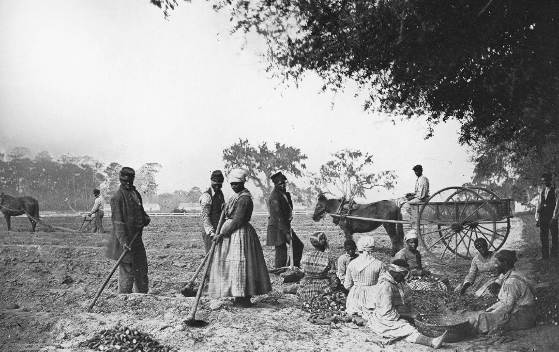 Civil war slaves xxx naked scenes