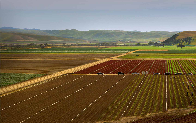 california_farm_1Acc_img