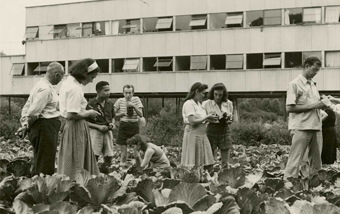 A photography class in a cabbage patch at Black Mountain College.