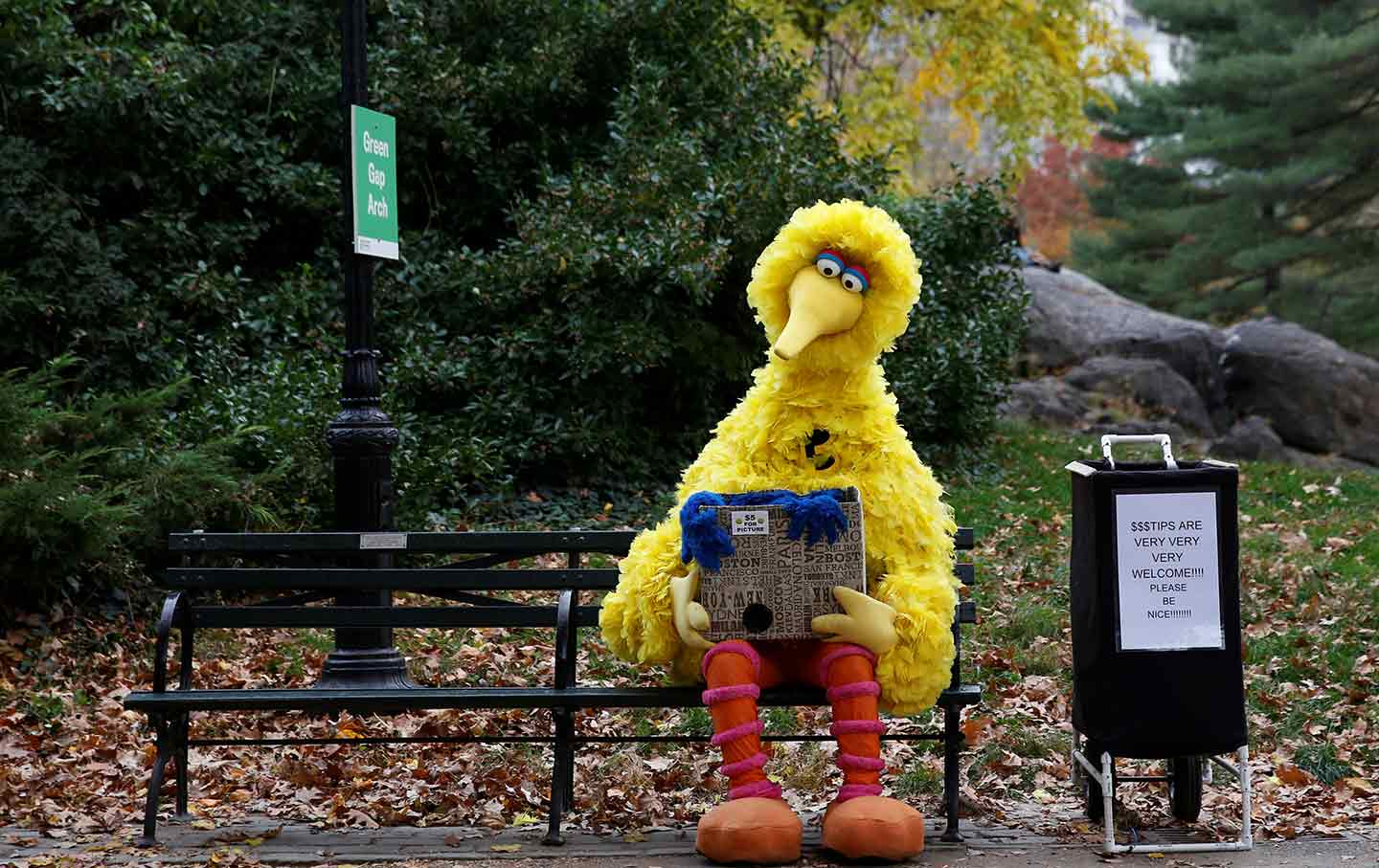 Big Bird on bench