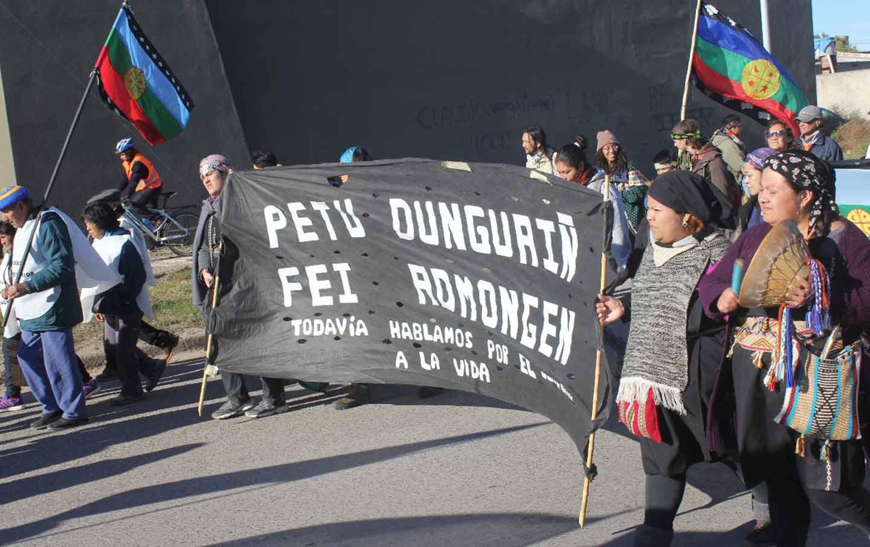 Mapuche march