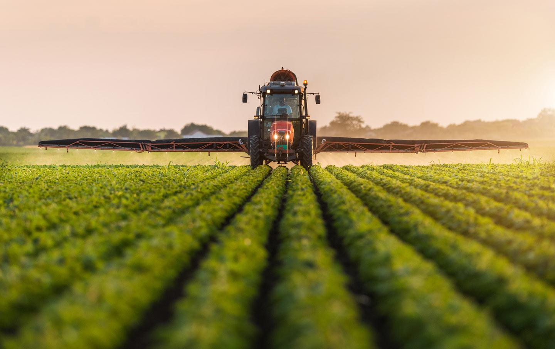 Ebersole-Monsanto_img