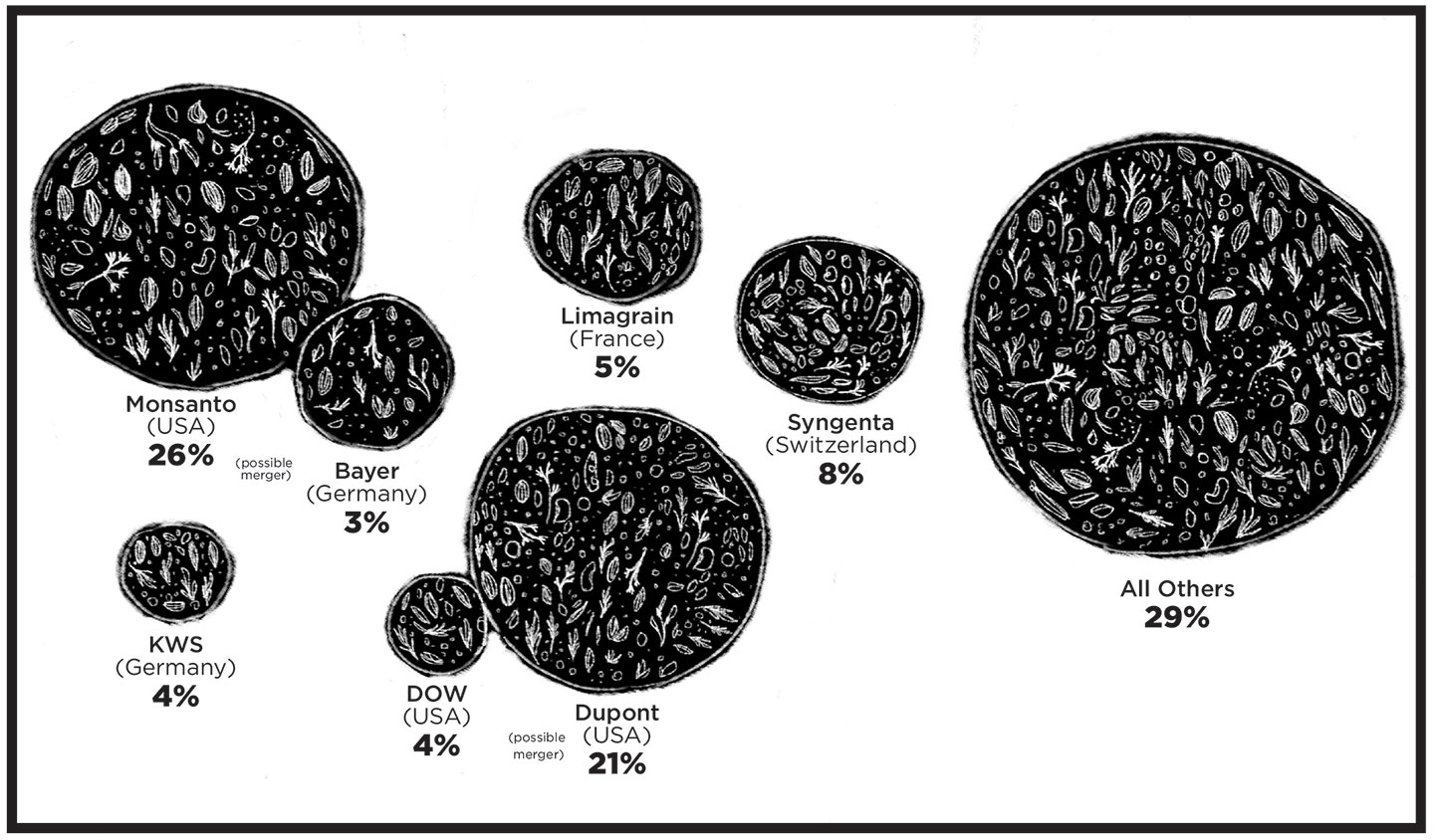 Index of img misc 10 bizarre curtains - Seven Corporations Controlled 71 Percent Of The Global Seed Market As Of 2015 Graphic By Nurul Hana Anwar