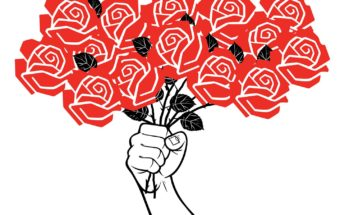 Since Trump's Victory, Democratic Socialists of America Has Become a Budding Political Force