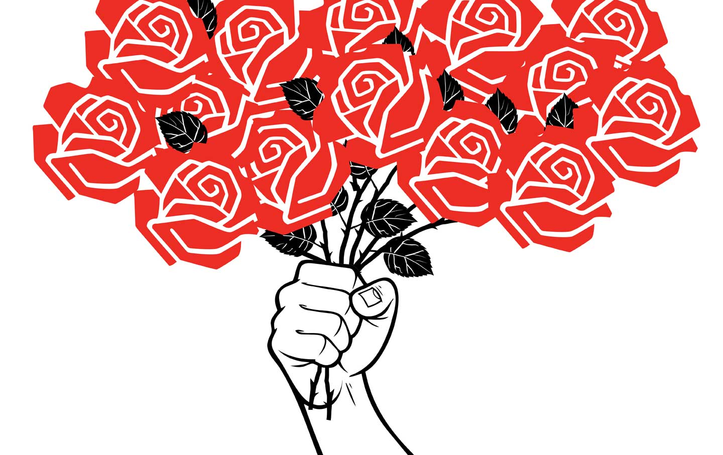 Since Trump's Victory, Democratic Socialists of America Has