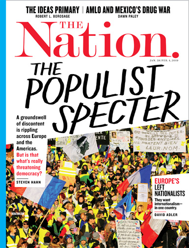 The Nation Is Populism Whats Really Threatening Democracy By Steven Hahn English Essays Topics also Essay On Business Management  English Essay Example