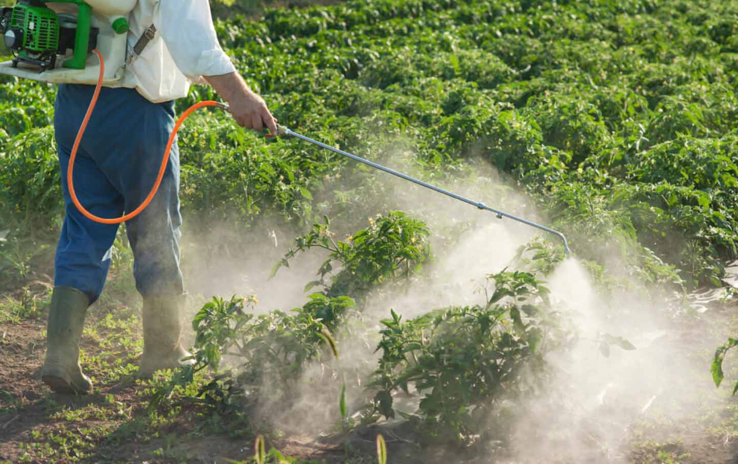 pesticide-spraying-california-otu-img