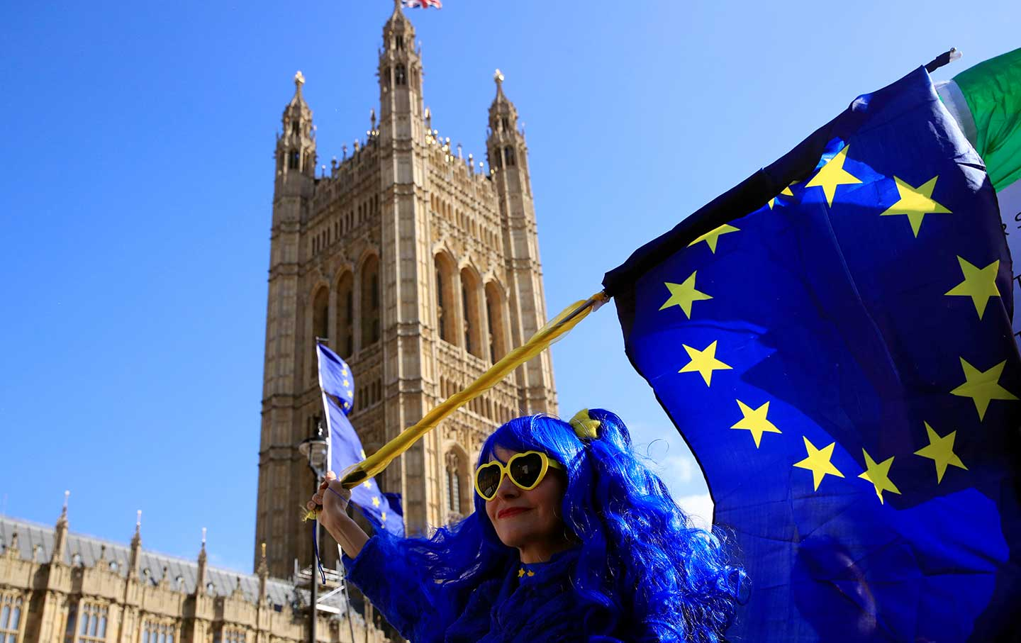 anti brexit protester rtr img.'