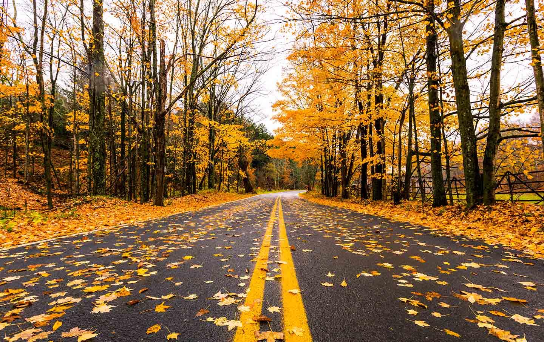 Fall_catskills_road