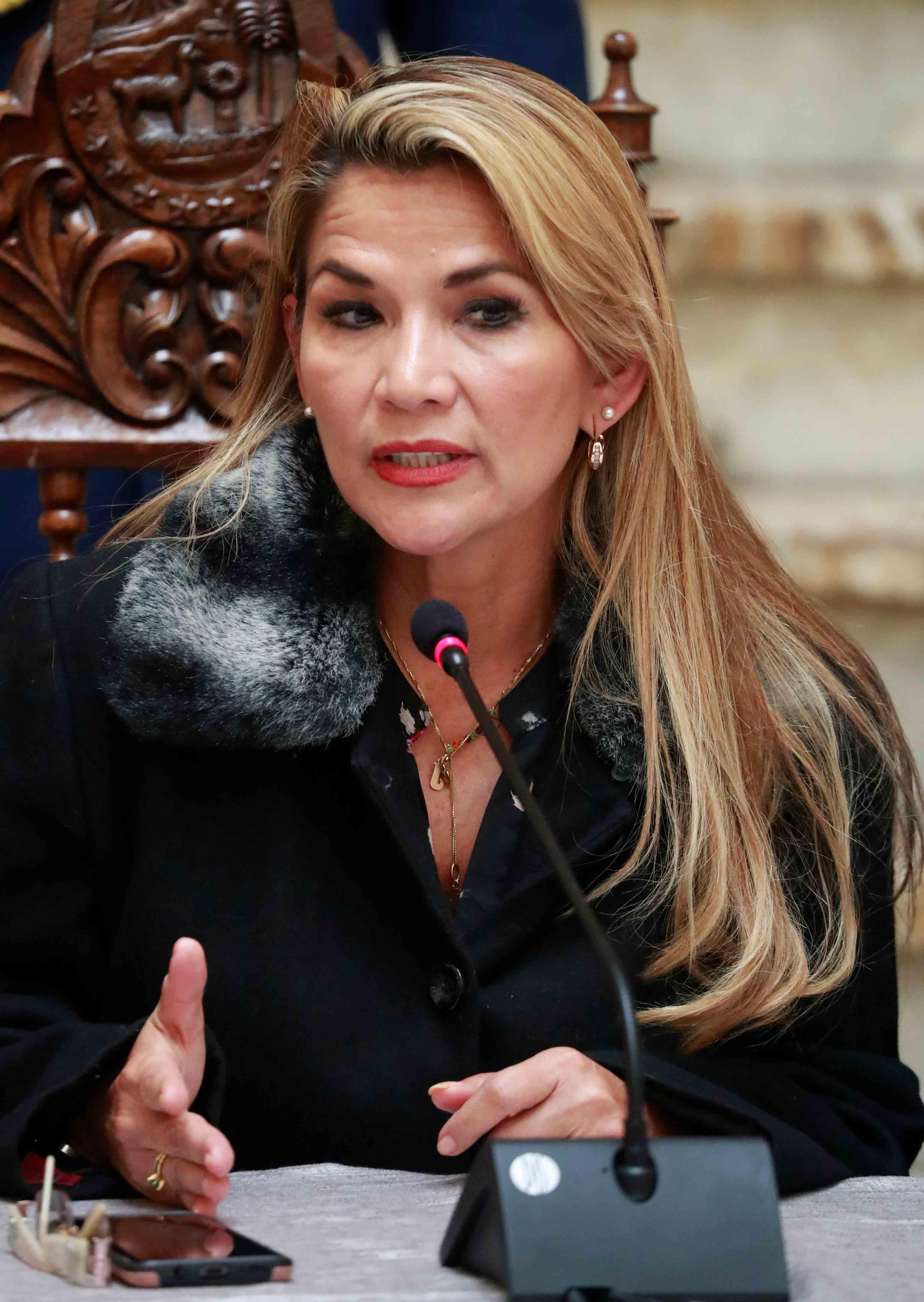 Jeanine Anez Boliva