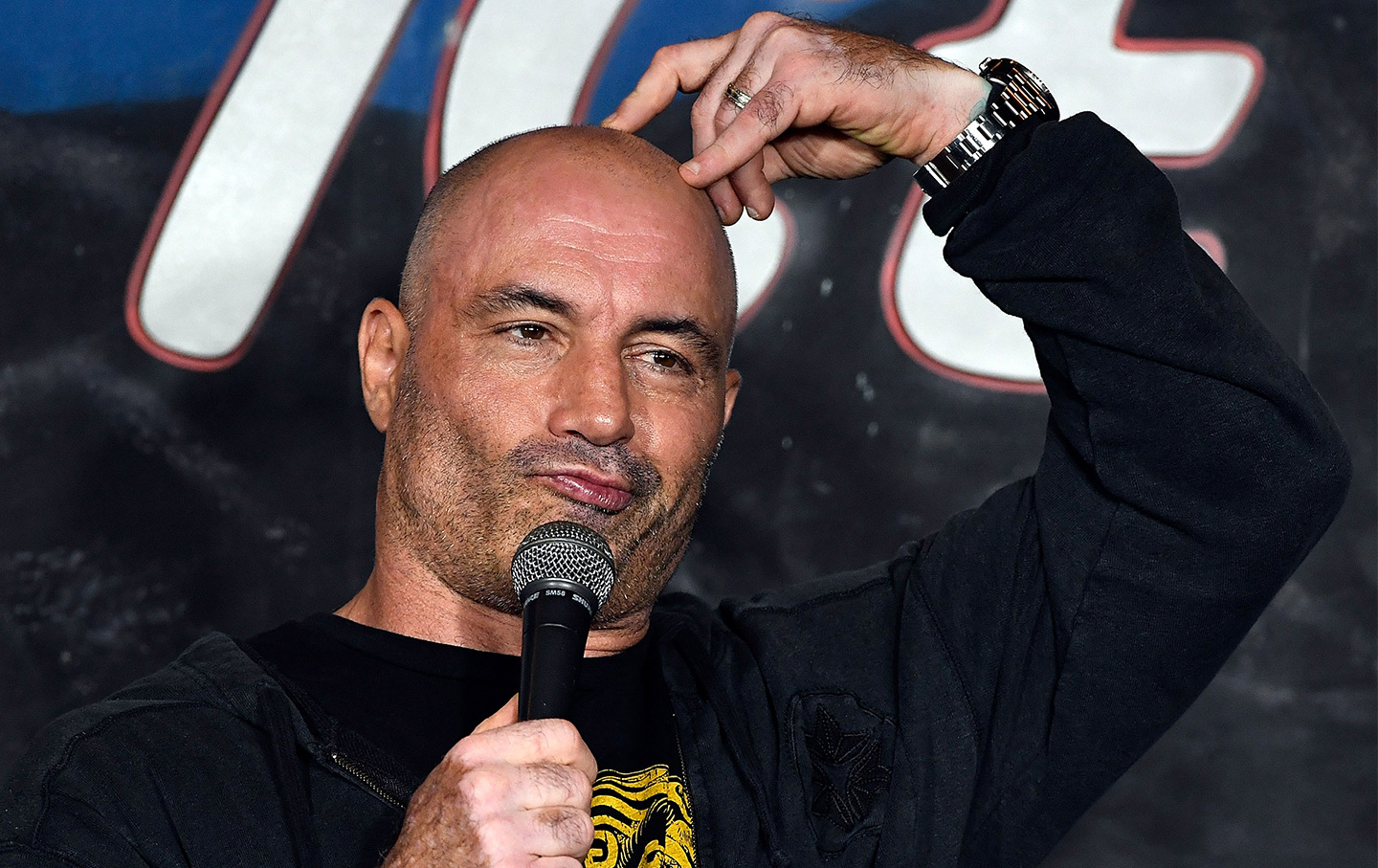 joe-rogan-comedian-gt-img