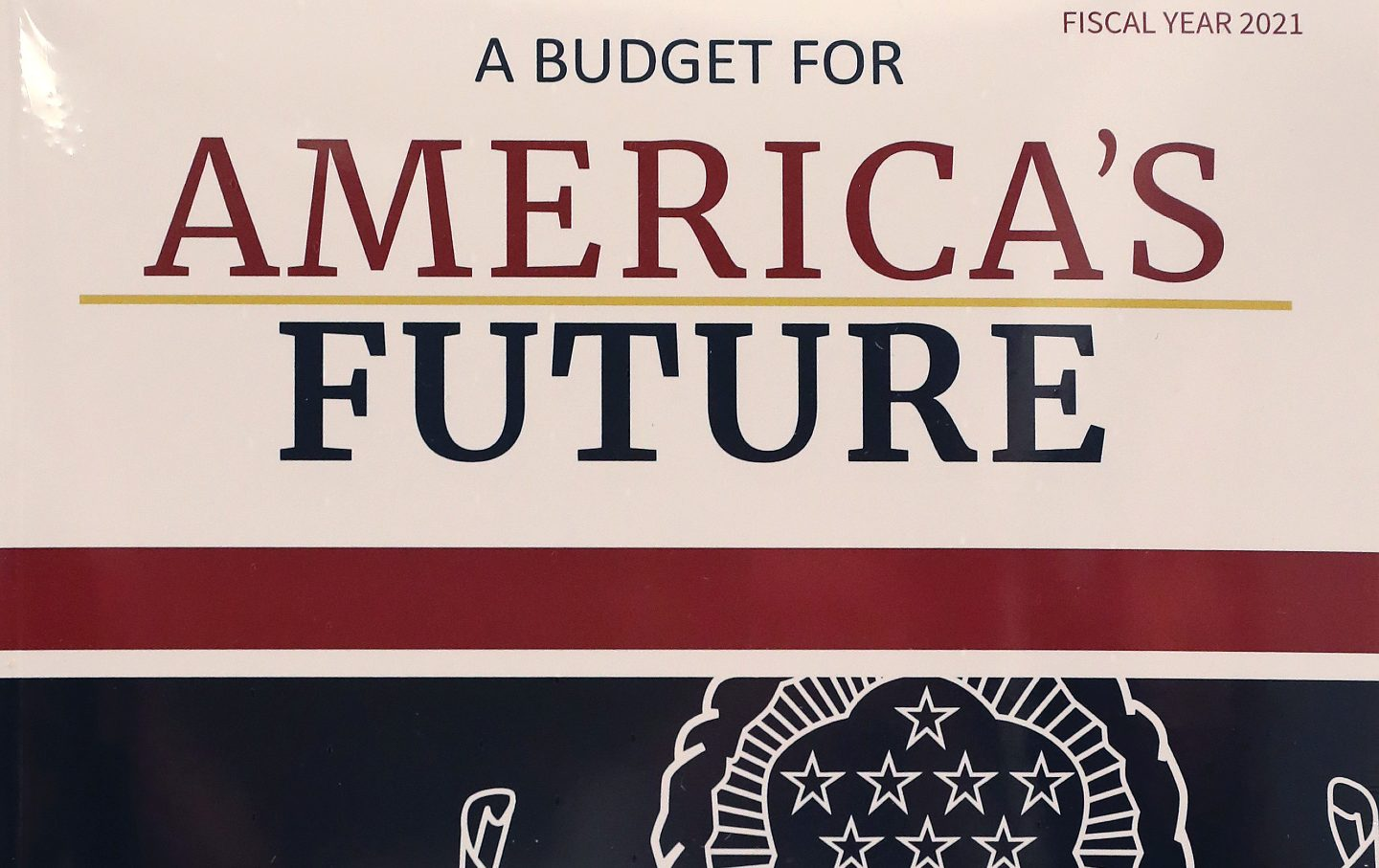 A copy of Trump's FY2021 budget.