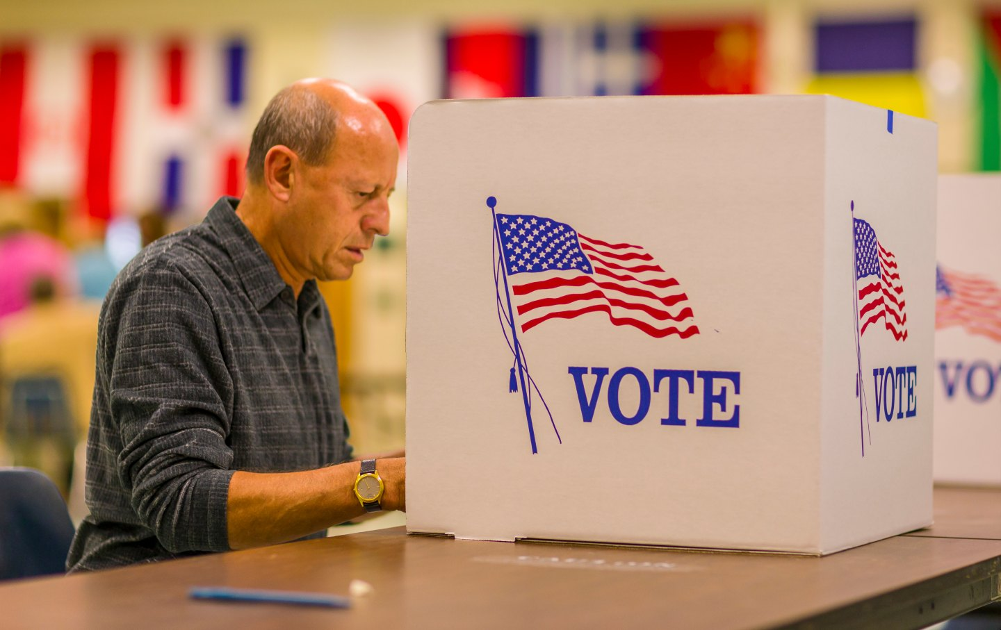 Man Voting in a Booth