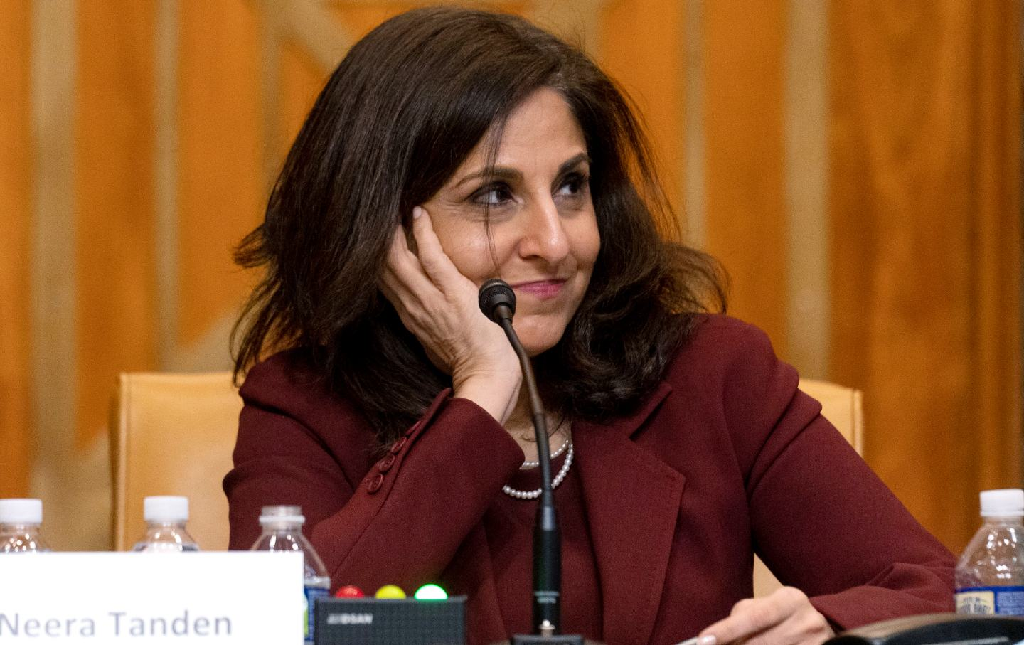 A Defense of Neera Tanden's Tweets (but Not of Neera Tanden)