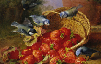 A Feast of Strawberries (Blue Tits) by Eloise Harriet Stannard